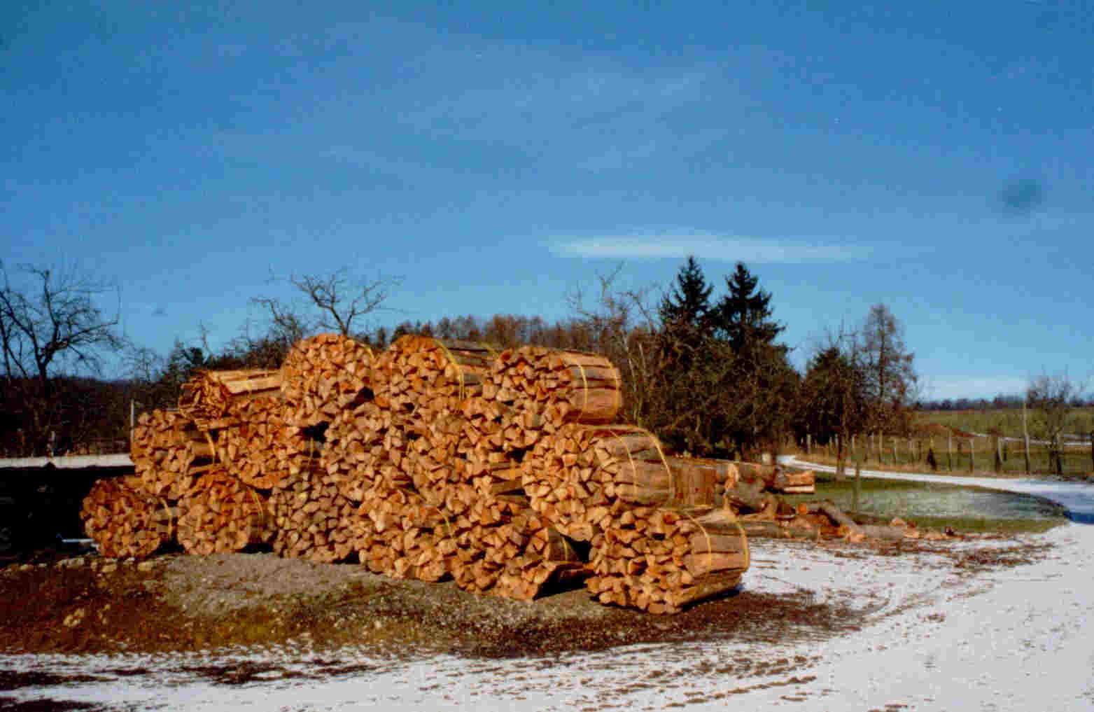 gewicht fichtenholz trocken